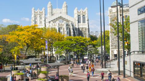 CCNY Campus in the fall